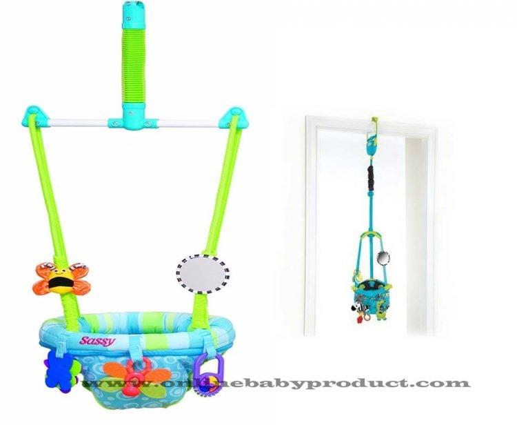 Sassy Seat Doorway Jumper review